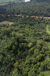 Forest degradation along the Kinabatangan River  -- sabah_aerial_2950