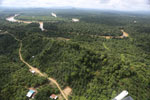 Oil palm near the Kinabatangan -- sabah_aerial_2958