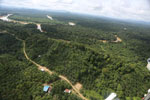 Oil palm near the Kinabatangan -- sabah_aerial_2960