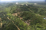 Oil palm near the Kinabatangan -- sabah_aerial_2967