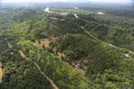 Oil palm near the Kinabatangan -- sabah_aerial_2968