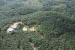 Oil palm plantation in a lowland area near Sandakan, Sabah -- sabah_aerial_2991