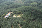 Oil palm plantation in a lowland area near Sandakan, Sabah -- sabah_aerial_2992
