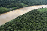 Kinabatangan River -- sabah_aerial_3071