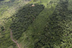 Forest clearing in Sabah -- sabah_aerial_3075