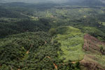 Palm oil plantation in Borneo -- sabah_aerial_3104