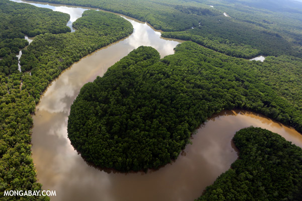 Lower Kinabatangan River in the Malaysian state of Sabah, Borneo. Photo by: Rhett A. Butler.