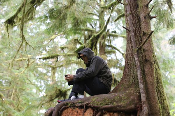 Rhett Butler in the Washington rainforest